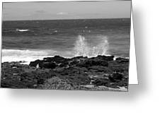 Splashing On The Shore Greeting Card