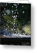 Splashing Greeting Card