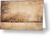 Splendor Greeting Card