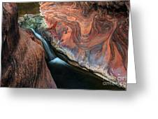 Splendor On Quail Creek Greeting Card