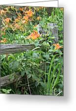 Split Rail Fence Greeting Card by Laurinda Bowling