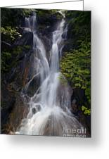 Split Top Falls Greeting Card