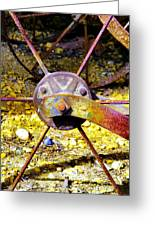 Spokes Ane Rust Greeting Card