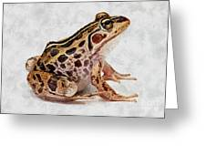 Spotted Dart Frog Greeting Card by Lanjee Chee