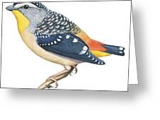 Spotted Diamondbird Greeting Card