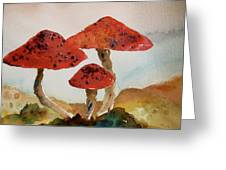 Spotted Mushrooms Greeting Card
