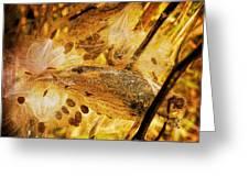 Spray Of Sienna Greeting Card