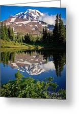 Spray Park Reflection Greeting Card