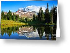 Spray Park Tarn Greeting Card
