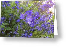 Sprays Of Blue Greeting Card