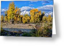 Spread Creek Grand Teton National Park Greeting Card