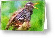 Spreading Bird Word Around Greeting Card