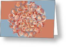 Spreeze Coral Greeting Card
