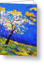 Spring 563140 Greeting Card