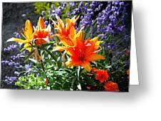 Spring 921 Greeting Card