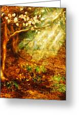 Spring - A Sign Of Spring Greeting Card