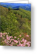 Spring Along The Blue Ridge Greeting Card
