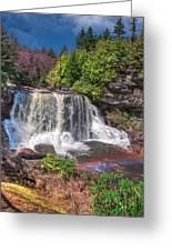 Spring At Blackwater Falls Greeting Card