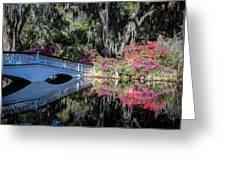 Spring At Magnolia Plantation 5 Greeting Card