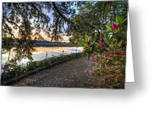 Spring At Magnolia Plantation 6 Greeting Card