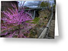 Spring At The Mill Greeting Card