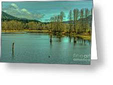 Spring At The Nicomen Slough Greeting Card