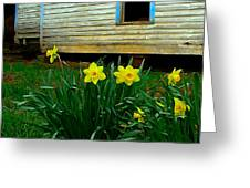 Spring At The Old Home Place Greeting Card by Julie Dant