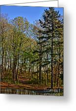 Spring At The Pond Series IIi Greeting Card