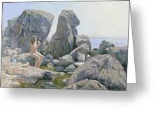 Spring At The Rock Shore  Greeting Card