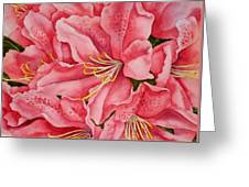 Spring Azalea Greeting Card