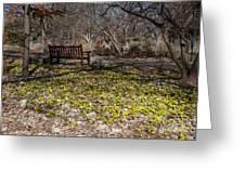 Spring Beal Greeting Card