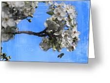 Spring Bee Greeting Card