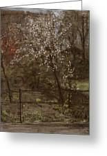 Spring Blossoms Greeting Card by Henry Muhrmann