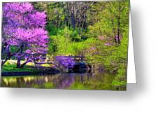 Spring Blossoms On Lake Marmo Greeting Card