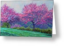 Spring Blossoms On Mill Mountain Greeting Card