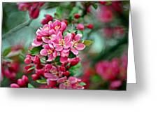 Spring Bokeh Greeting Card