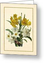 Spring Bouquet Of Daffodils And Narcissus With Butterfly Vertical Greeting Card