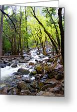 Spring Cascade Of Water From Bridal Veil Falls In Yosemite Np-2013 Greeting Card