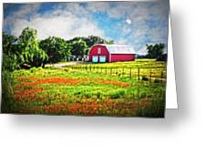 Spring Charm In The Hill Country Greeting Card