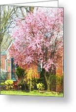 Spring - Cherry Tree By Brick House Greeting Card