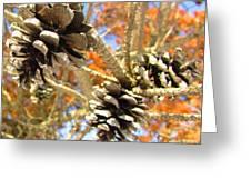 Spring Cones Greeting Card