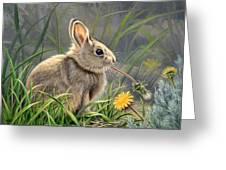 Spring Cottontail Greeting Card