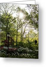 Spring Day In The Park Greeting Card