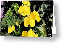 Spring Delight In Yellow Greeting Card