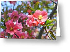 Spring Everywhere Greeting Card