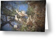 Spring Fancies 5 Greeting Card