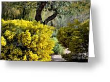 Spring Flora Greeting Card
