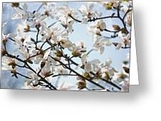 Spring Flora Greeting Card