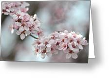 Spring Flowering Tree In Spring Greeting Card