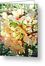 Spring Flowers 27 Greeting Card